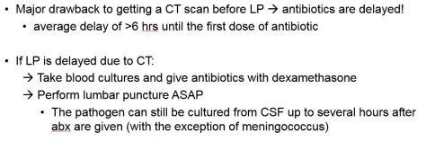 Meningitis6