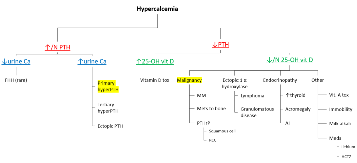 Hypercalcemia algorithm